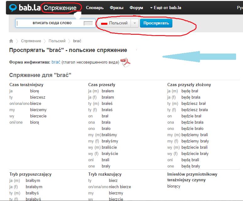 трудности изучения русского языка в польше
